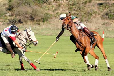Playing polo on the Estancia