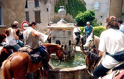 Horses drinking at a village fountain en route