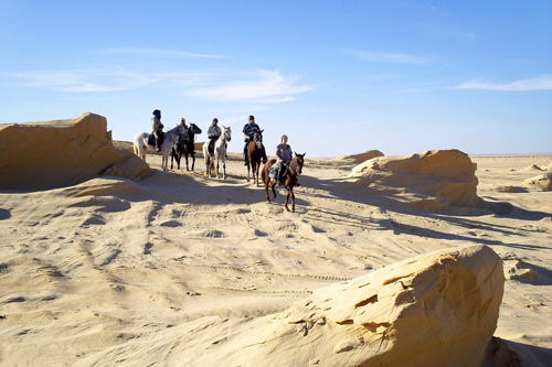 Horse riding holiday in Tunisia