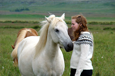 Horse and young rider on Icelandic Farm