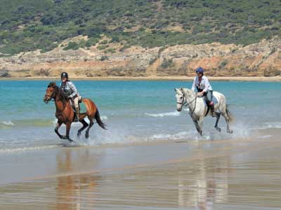 Beach gallop in Andalusia