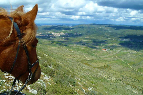 Plateau view riding in Portugal