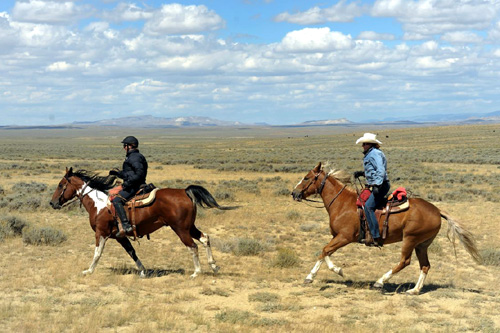 Cantering Wyoming
