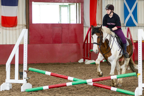 Show jumping lesson