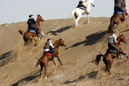 Cantering through desert dunes in Oman