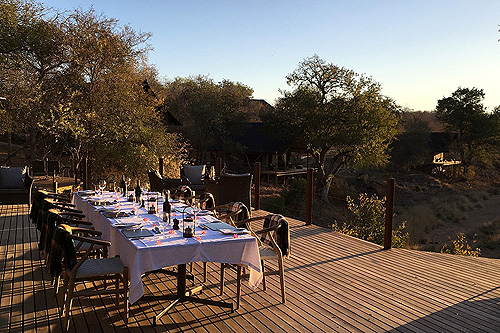 Gourmet dining safari