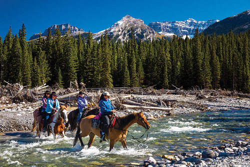 Riding through the river in Banff National Park