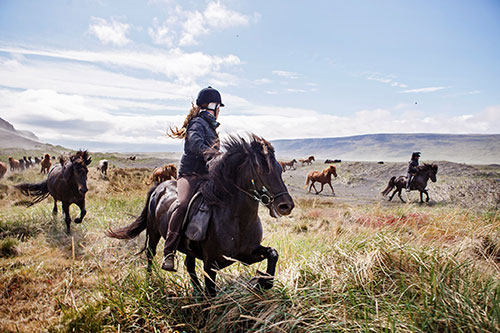 Riding on the Kings Trail in Iceland