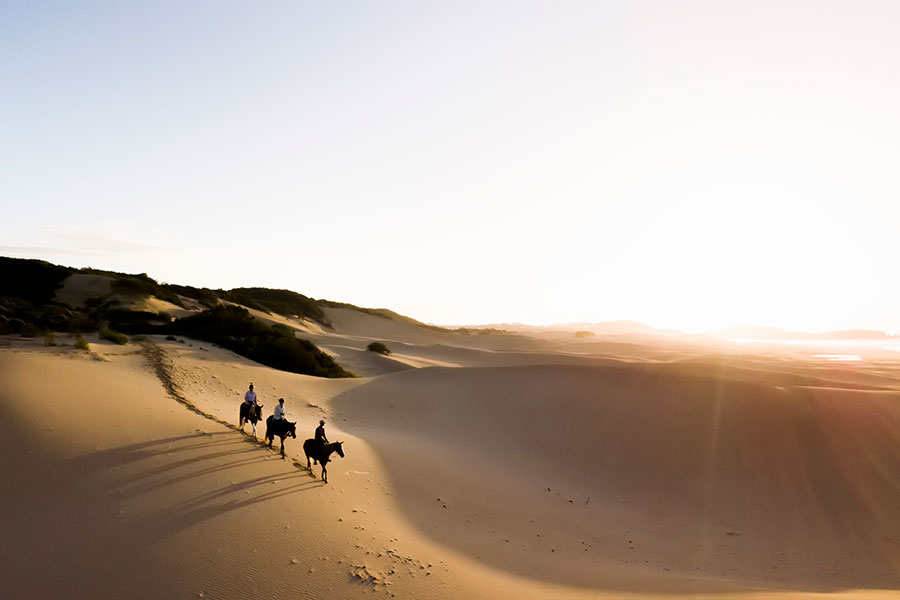 Riding down the dunes on the Sunshine Coast