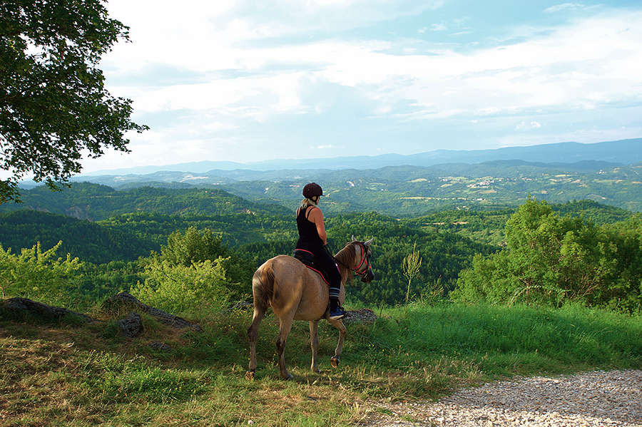 Riding in Istria, Croatia