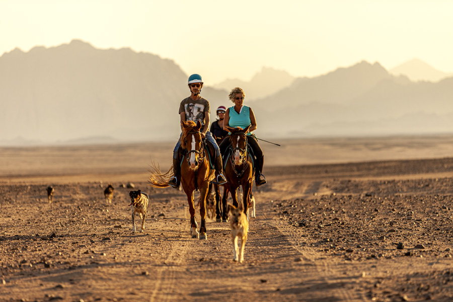 Riding in the desert in Egypt