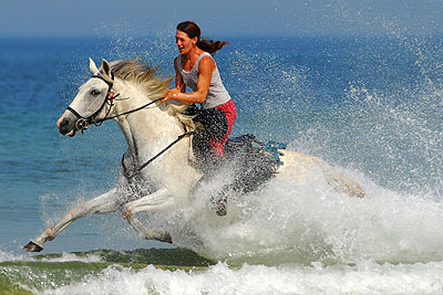 beach gallop in the surf!
