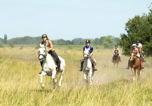 Galloping the Puszta plains