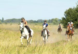 Galloping the Puszta plains