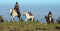 Riding Adventure in Ethiopia