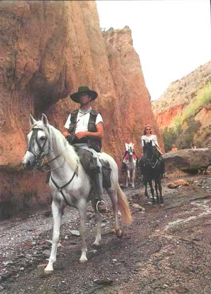 Alpujarras Trail, Spain   Horse Riding Holidays