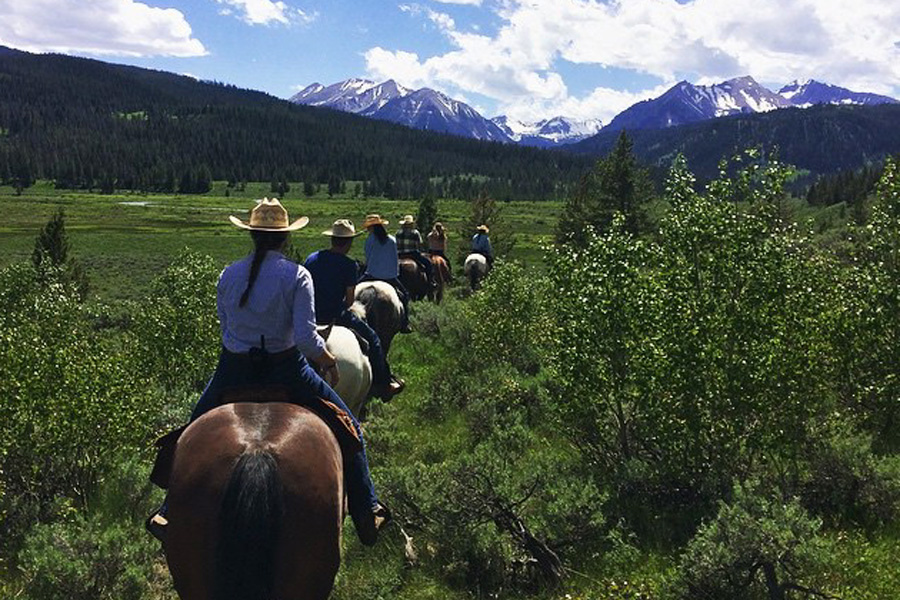 horse riding holiday in Montana