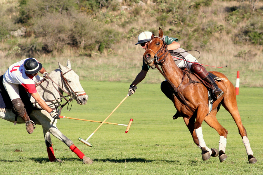 Polo match action shot