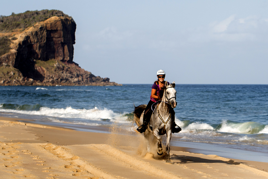 Galloping along the beach