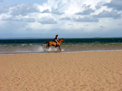 Galloping along the beach in Mozambique