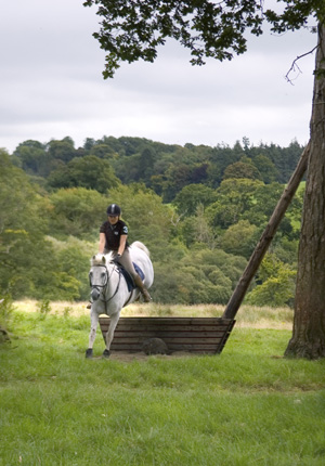 Jumping on the cross-country course in the grounds of Castle Leslie, Ireland