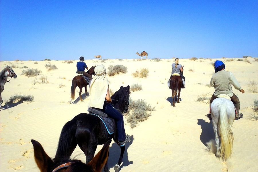 Desert horseback vacation Tunisia
