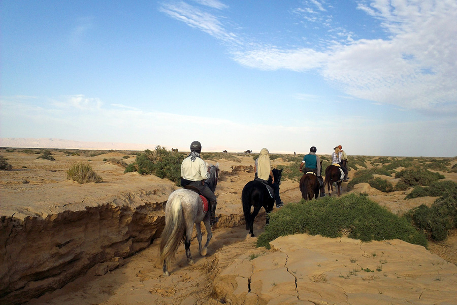 Desert horse riding holiday