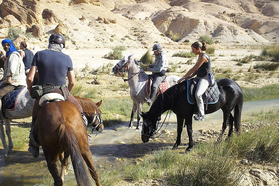 Horse riding desert holiday