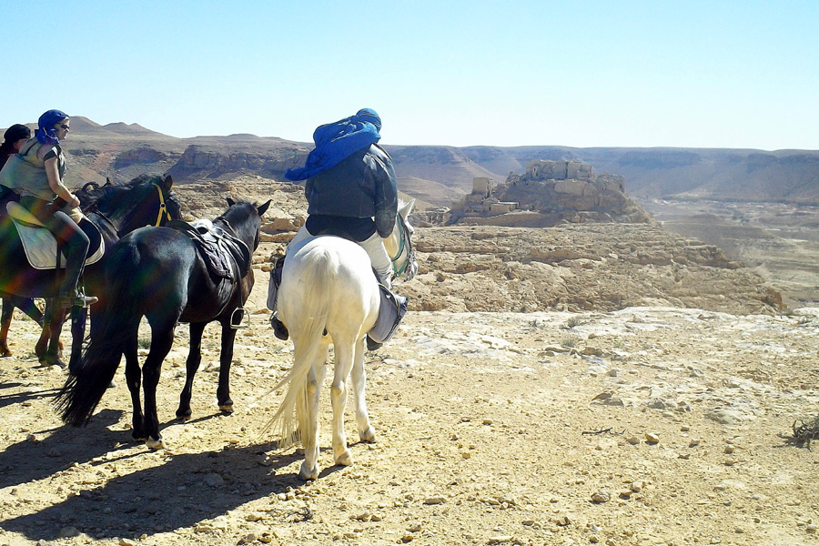 Horse riding holiday Tunisia