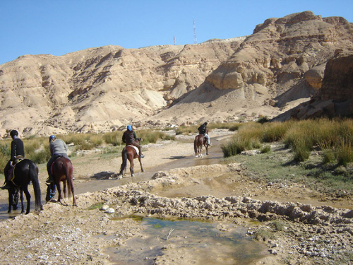 Riding along the river bed