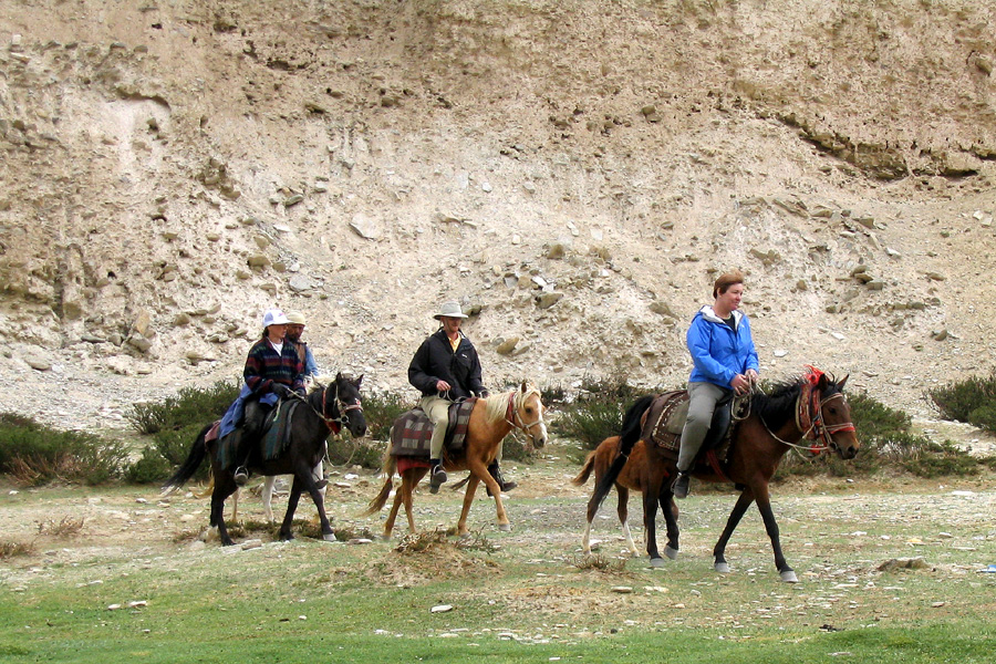 Horse riding holiday India