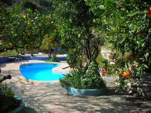 Terrace and swimming pool at the finca
