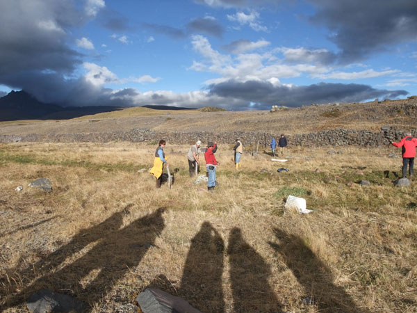 Evening shadows on the paramo