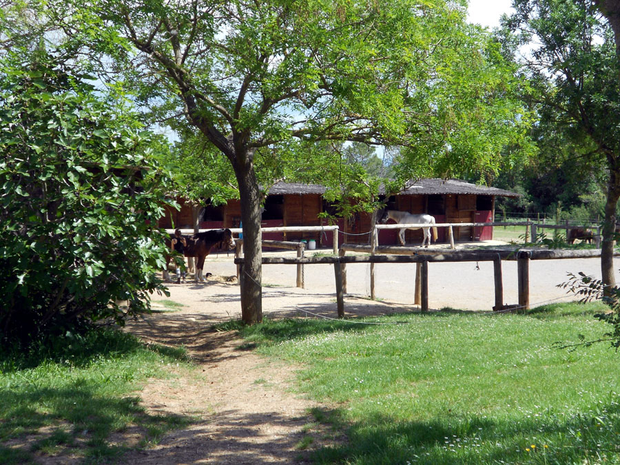 the stables back at base