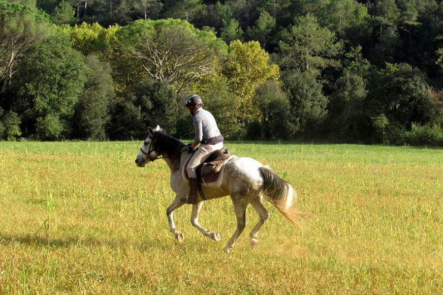 Horseback vacation Spain