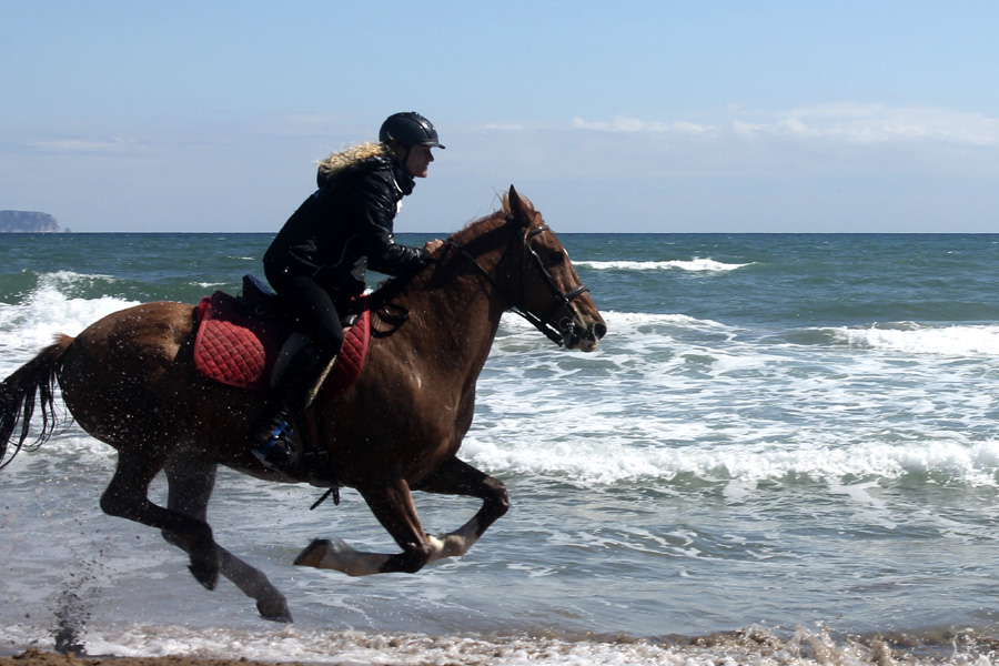 Horseback vacation Catalonia