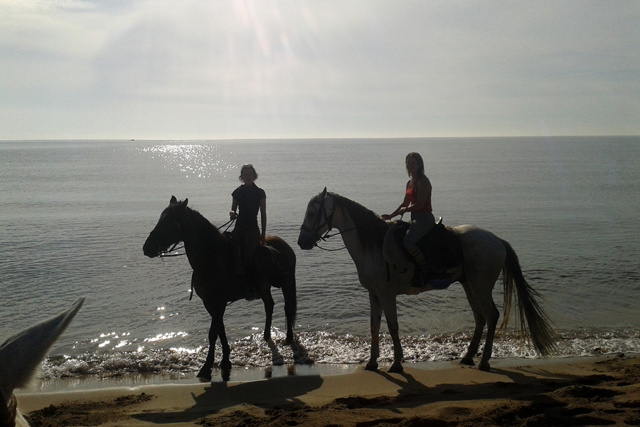 Beach horse riding holiday Spain