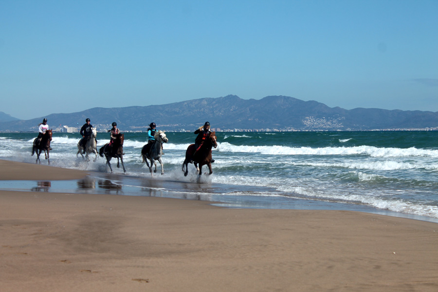 Beach riding horse riding holiday