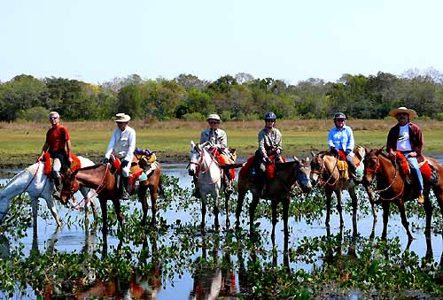 Riding in the sunset, Pantanal, Brazil
