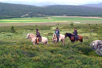 Riding with a view on Rondane National Park