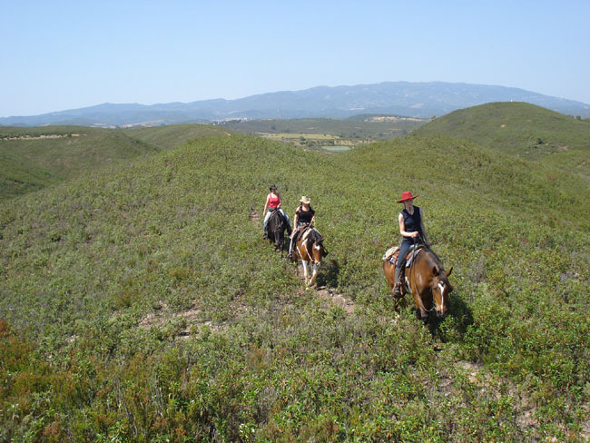 Riding in the hills above the ranch