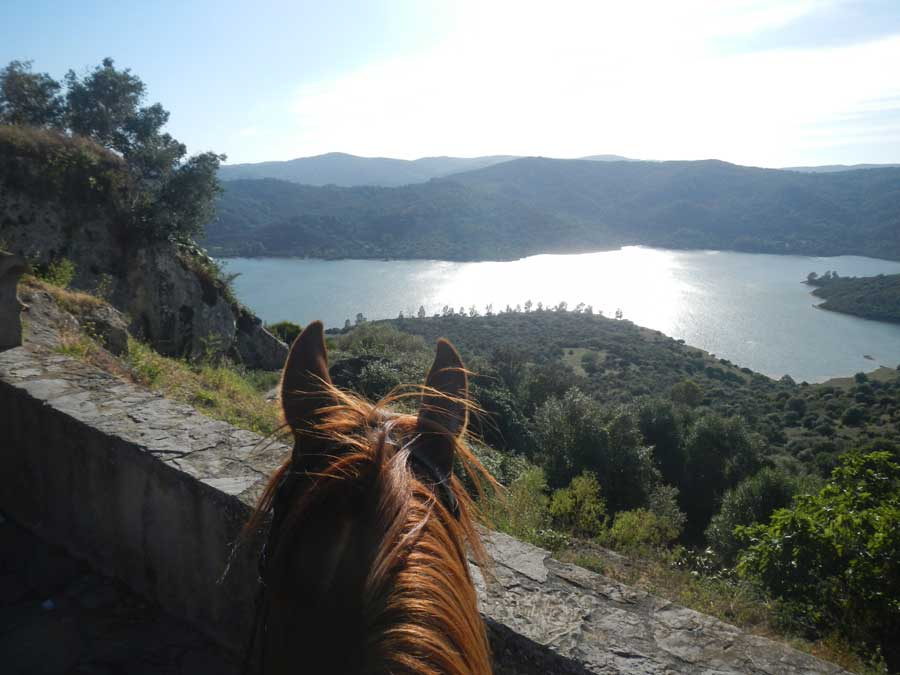 view from the castle on horseback