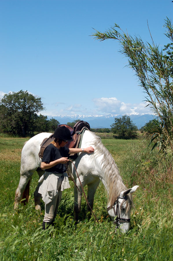 Stop to allow horses to graze en route riding holiday Catalonia December