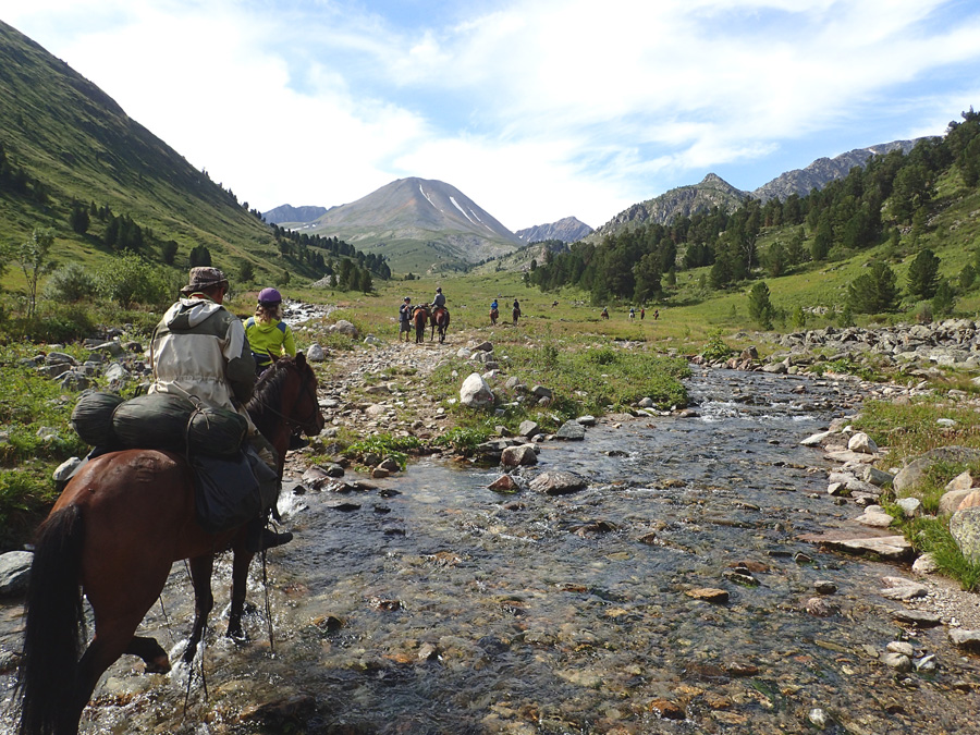 Stream, Mountains and horses. This is what exploring is all about.