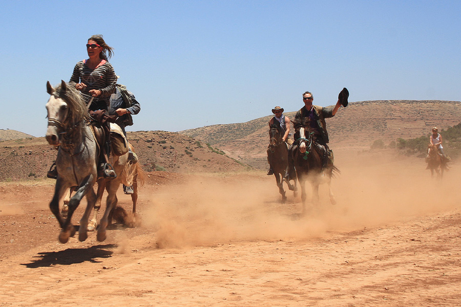cantering horses in the Atlas mountains