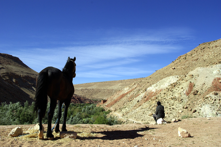 horse and rider looking across the Atlas mountains