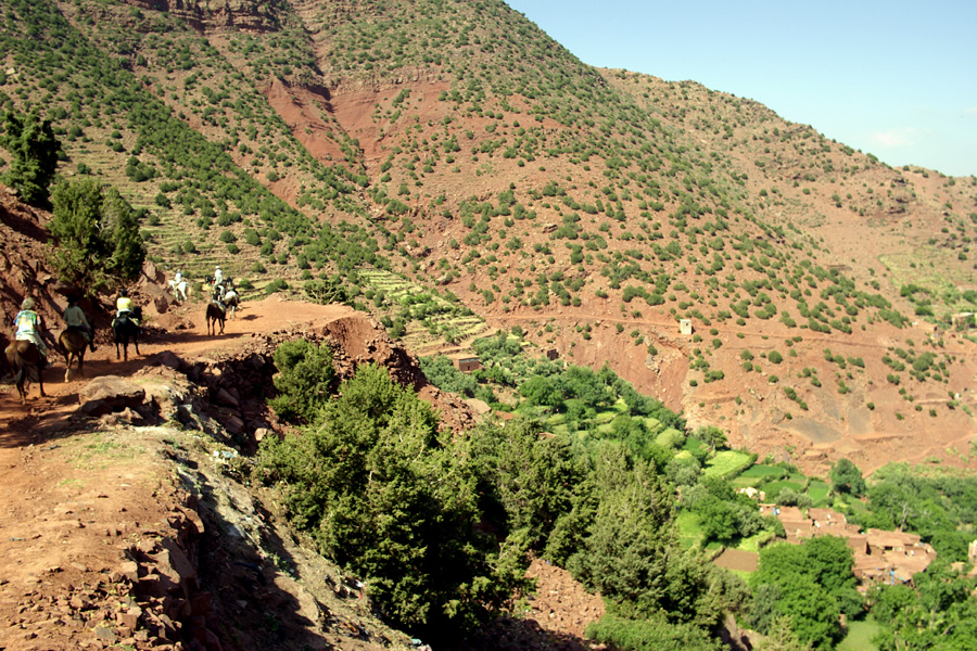 horse riding along trails in the Atlas mountains