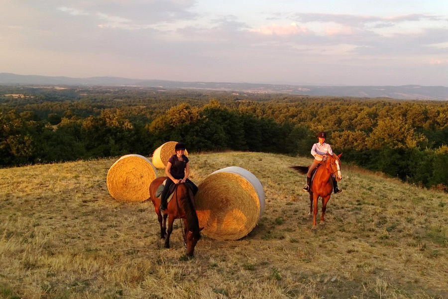 explore Italy on horseback