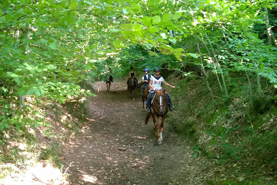 horse riding holiday Italy
