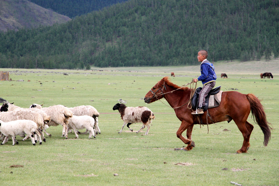 spending time with nomads in Mongolia